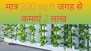 Download Hydroponic farming in India | latest technology in agriculture Video
