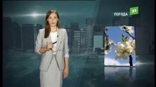 Download Прогноз погоды от Алены Фело на 16, 17, 18 июня Video