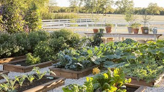 Download The Gaines Family Garden Video