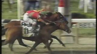Download Victory Gallop Belmont Stakes 1998 - Thrilling finish - Triple Crown lost by a nose Video