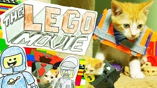 Download The LEGO Movie (Cute Kitten Version) Video