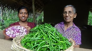 Download Green Chilli Recipe ❤ Spiciest curry by Grandma and daughter | Village Life Video