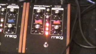 Download Moog Moogerfooger MF-103 12 Stage Phaser Demo Video
