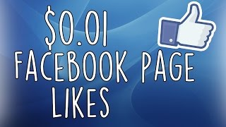 Download $0.01 Facebook Page Likes OCT 2015 with Facebook Ads Power Editor Tutorial Video