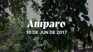Download Iniciando um dia no Mosteiro São Damião Video