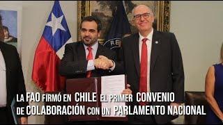 Download FAO firma en Chile el primer convenio de colaboración con un parlamento nacional Video