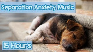 Download 15 HOURS of Deep Separation Anxiety Music for Dog Relaxation! Helped 4 Million Dogs Worldwide! NEW! Video