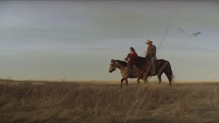 Download Our Sustainable Beef Journey | Sustainability | McDonald's Video