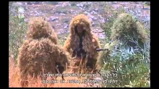 Download IDF Israeli Snipers | Full Movie NEW! - הצלפים של צה″ל | סרטון חדש Video