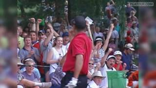 Download Tiger Woods Motivation - Anything Can Be Achieved If You Believe! Video