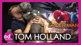 Download Spider-Man: Tom Holland brings his dog to our interview Video