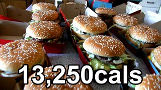 Download Eating 25 Big Macs in One Sitting (World Record) Video