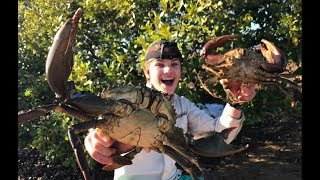Download Catch n Cook barehanded MUDCRABS! HD Video