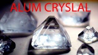 Download Alum crystal growing incubator.Arduino based temperature controller. Video