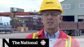 Download The business impact of Trump's tariffs on Canada Video