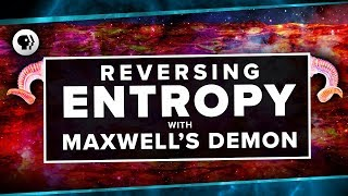 Download Reversing Entropy with Maxwell's Demon | Space Time Video