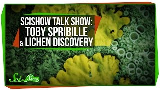Download SciShow Talk Show with Toby Spribille & A New Lichen Discovery Video