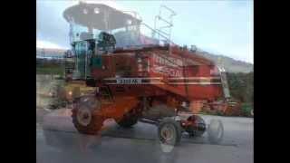 Download Mietitrebbie in vendita Laverda Fiatagri Newholland BENEVENTO Video