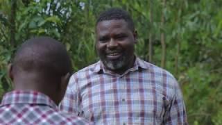 Download PAPA SAVA EP 40 : OYA NDAZA BY NIYITEGEKA Gratien( Rwandan Comedy) Video