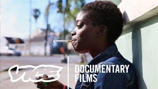 Download SHELTER (Full Length Documentary) Video