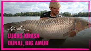 Download Lukas Krasa - Dunaj BIG AMUR Video