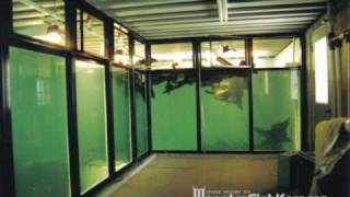 Download 50000 + 15000 Gallon Monster Tanks - MonsterFishkeepers Video