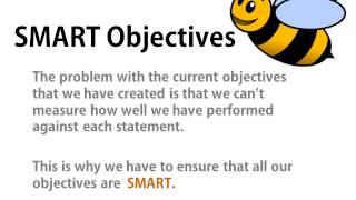 Download Bee Business Bee Aims and Objectives Tutorial Video