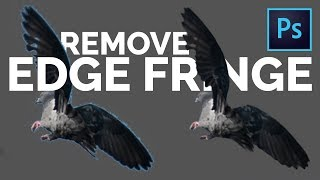 Download 2 Easy Tricks to Remove White Edges or Fringes from Cut-Outs in Photoshop Video