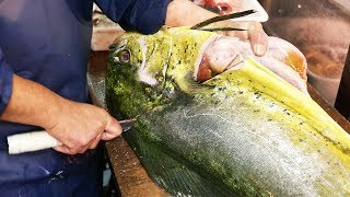 Download Japanese Street Food - GIANT MAHI MAHI FISH Japan Seafood Video