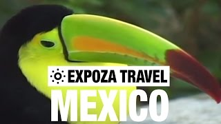 Download Mexico Vacation Travel Video Guide Video