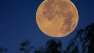 Download Rare 'Supermoon' In Nov. 2016 - NASA's Advice On How To Watch It | Video Video