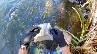 Download I Found a Bag of Cash Underwater in the River! (Guess How Much Money was Inside?!) Video