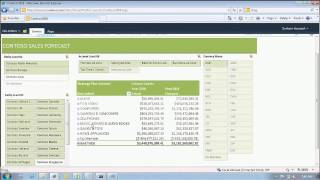 Download Advanced Business Intelligence Solutions Using Microsoft Excel Excel Services Video