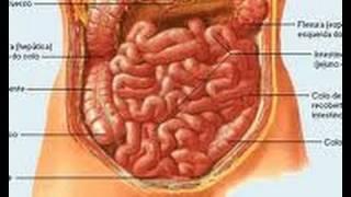 Download Remedio para el estreñimiento y la colitis. Inflamación del intestino. Colon irritable Video