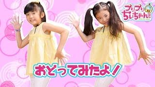 Download 踊ってみた♪ハニーアンドループス(ぷりぷりちぃちゃんエンディングテーマ曲) Video