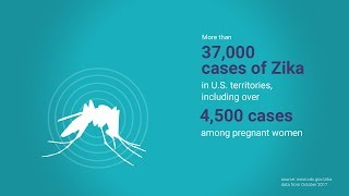 Download Preventing Birth Defects from Zika Video