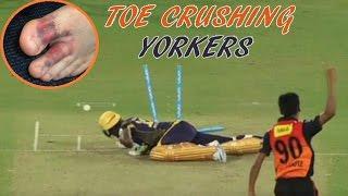 Download Top 10 Toe Crushing Yorkers in Cricket || Batsman Fall & Injured Video