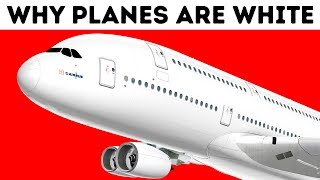 Download Why Airplanes Are Almost Always White Video