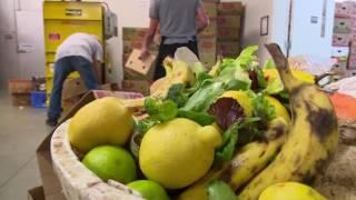 Download Food banks & disasters Video