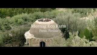 Download Mornag Eco Farm, une ferme écologique en Tunisie Video