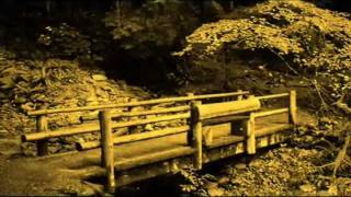 Download Nanda Malini - කඩමන්ඩියේ දොළ අයිනේ..(Kadamandiye Dola Ayne) Video