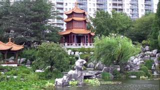 Download Sydney, Australia - Chinatown - February 4, 2016 Video