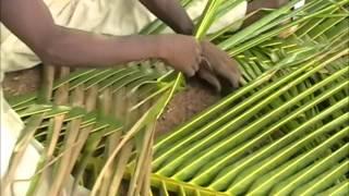 Download Weaving Coconut Fronds- Ghana's Natural Beauty! Video