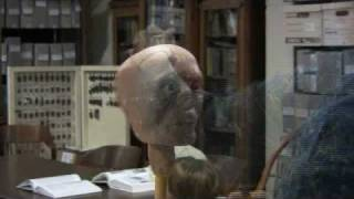 Download 3000 year old Mummy Skull forensic reconstuction Video
