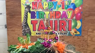 Download Tajiri's 1st Birthday Party Video