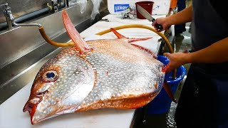 Download Japanese Street Food - GIANT OPAH SUNFISH Okinawa Japan Video