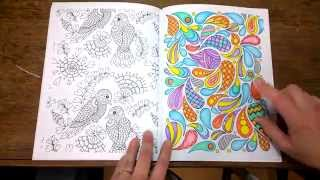 Download The Art of Mindfullness Colouring book. Finished pages, tips and walk through. Video