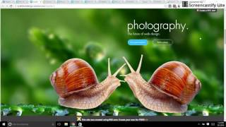 Download Expert Design for WIX Websites Video