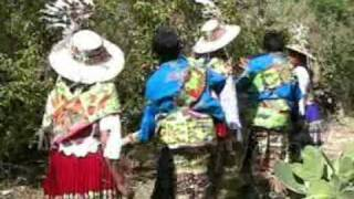 Download los cristales de norte de potosi Video