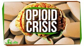 Download Why Is There an Opioid Crisis? Video
